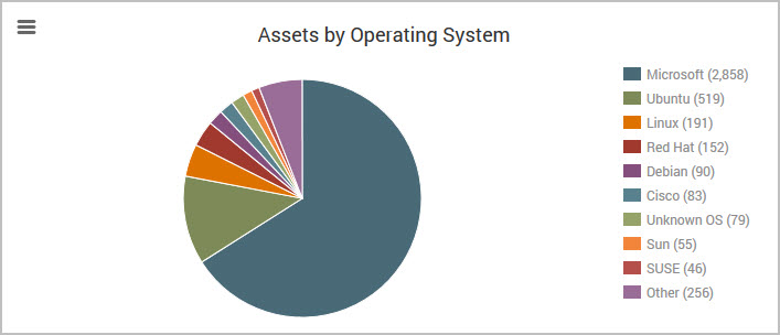 Assets by Operating System