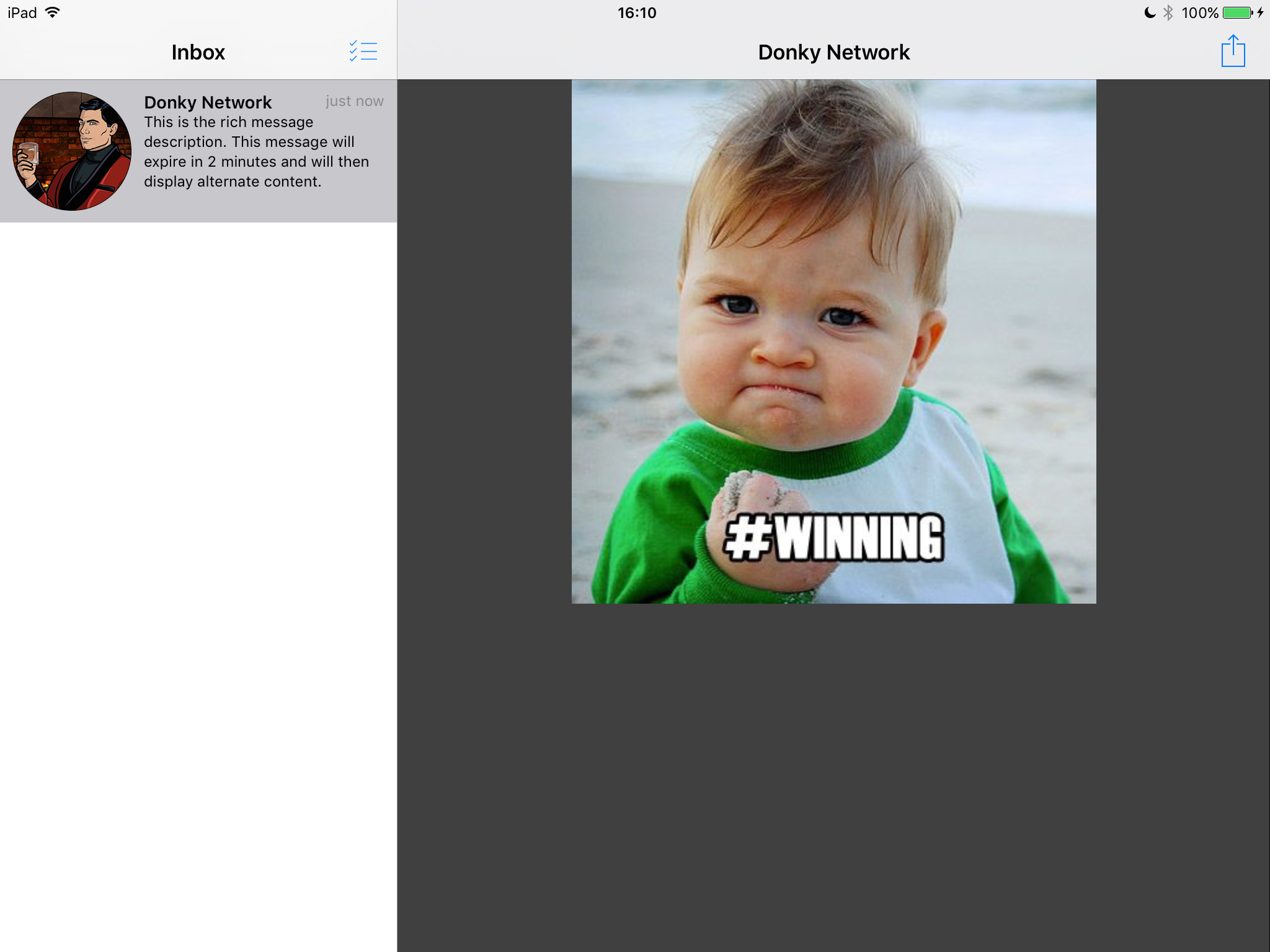 An example of a selected rich message in a Split View controller on an iPad, iOS 7.0 in Landscape.
