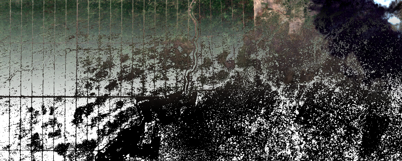 Output image with Vegetation Mask applied