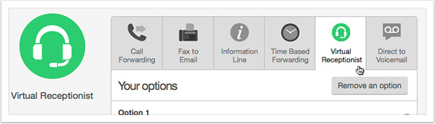 Select 'Virtual Receptionist' from the drop down
