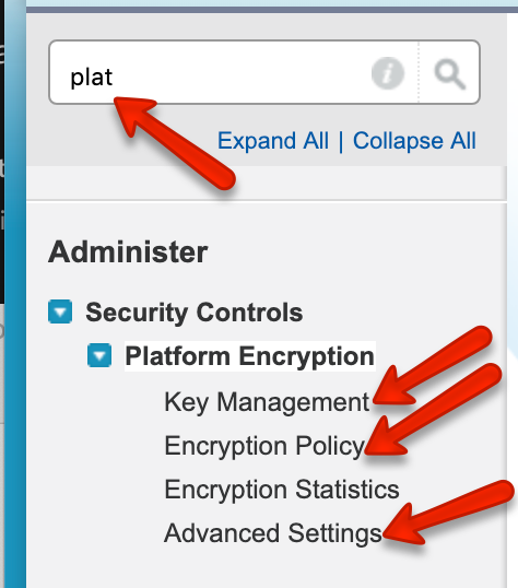 Salesforce Shield / Platform Encryption with all Blackthorn apps