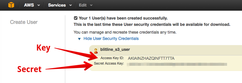 When creating your new IAM user, be sure to record the **Access Key** and **Secret**