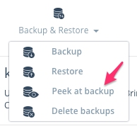 Step 1: Click on Backup & Restore in the manage strip