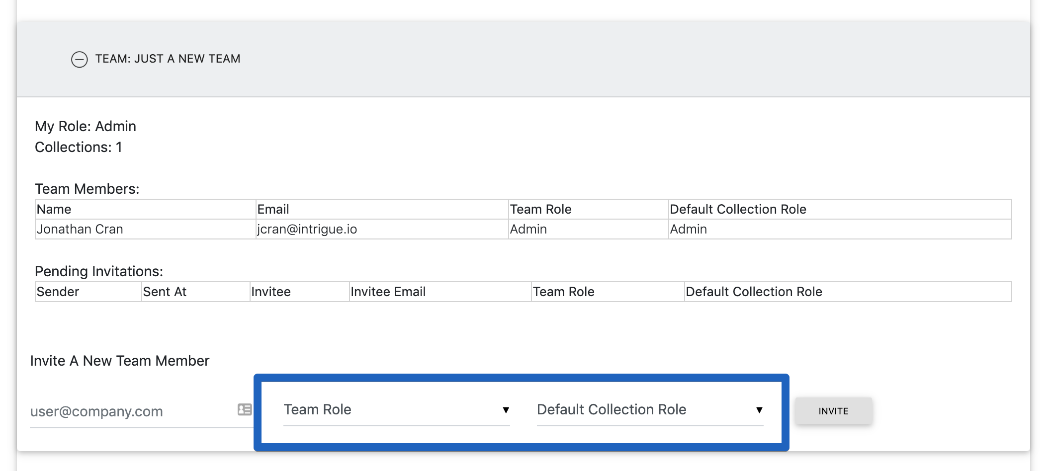 Specify a team role and a default collection role when inviting a new user to the team.