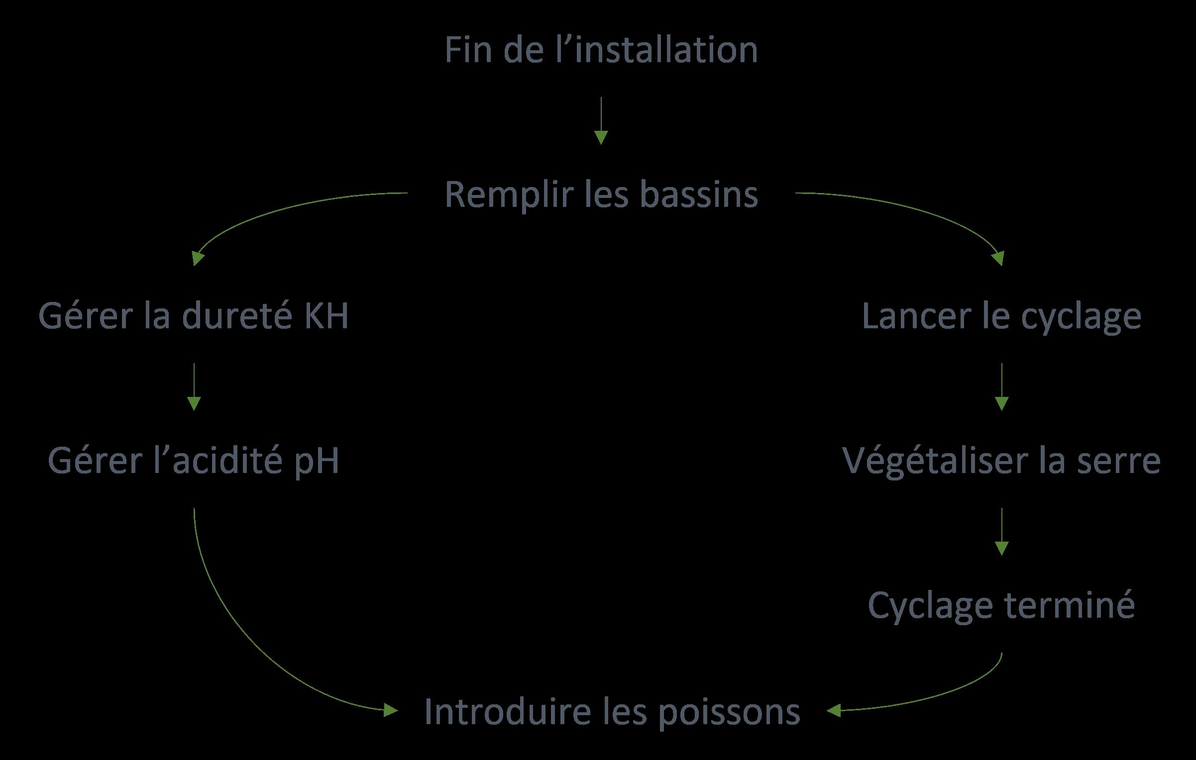 Schéma récapitulatif des étapes pour la mise en route de la serre en aquaponie.