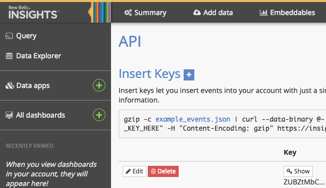 Insert API Key Example
