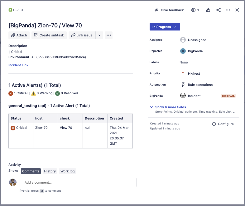 Example of a Jira Issue
