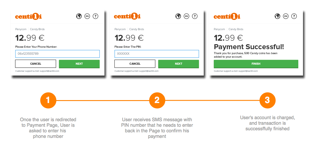 Example of Payment Page with PIN payment flow